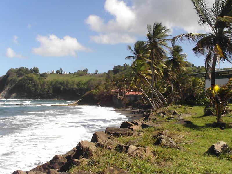 Vacances en Martinique: les sites à visiter