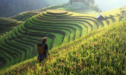 Les plus belles destinations d'Asie à découvrir